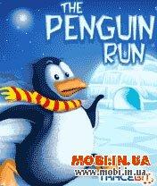 Беги, Пингвин. Беги!