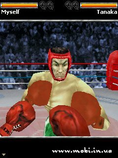 Photo Boxing 3D